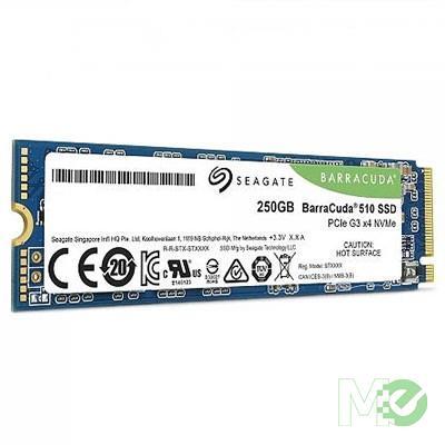 MX81317 250GB BarraCuda 510 M.2 NVMe PCIe Gen3 x4 SSD